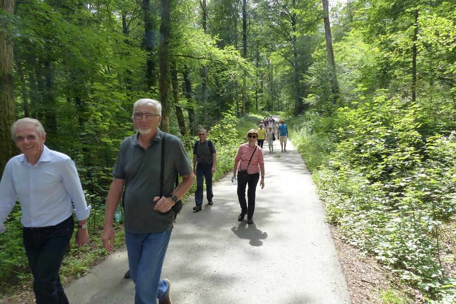 Im kühlen Wald geht es nach Bebenhausen