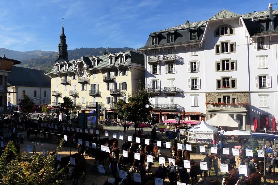 Viele Tiere mitten in Saint-Gervais