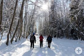 Winterwanderer unterwegs