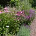 Waldbronner Kräutergarten   im Kurpark