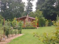 Blick auf den Vereinsgarten