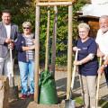 Die Bürgermeister Lars Petermann und Franz Masino mit den Sprecherinnen der Freundschaftskreise Gudrun Baer und Marianne Müller am Baum.
