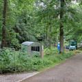 Die Sanierungsarbeiten im ehemaligen Therapiepark haben begonnen.   Bild: Gemeinde Waldbronn