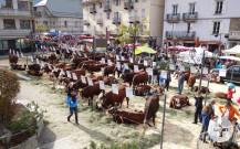Auf einem Viehmarkt darf das liebe Vieh nicht fehlen
