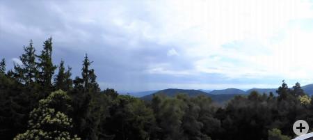 Mehrere tolle Blicke über den Pfälzer Wald und in die Rheinebene gab es bei diesem Ausflug