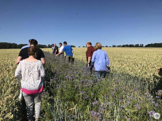 Während einer Exkursion zu einem Blütenkornfeld in der Nähe von Pforzheim nahmen neben der Geschäftsleitung auch Mitarbeiter aus Produktion und Verkauf teil.