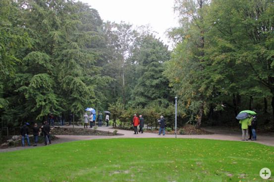 """Ein Blick in den neu sanierten Waldpark. Der Weg führt zum """"Seerosenteich""""."""